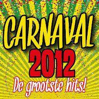 Cover  - Carnaval 2012 - De grootste hits!