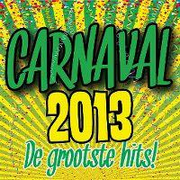 Cover  - Carnaval 2013 - De grootste hits!
