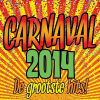 Cover  - Carnaval 2014 - De grootste hits!