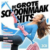 Cover  - De grote schoonmaak hits