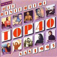 Cover  - Het beste uit de Top 40 van 1993