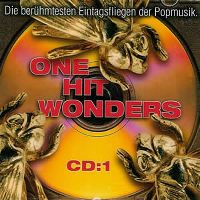 Cover  - Hit Eintagsfliegen - One Hit Wonders