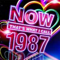 Cover  - Now That's What I Call 1987