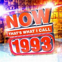 Cover  - Now That's What I Call 1993