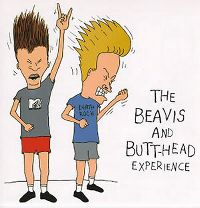 Cover  - The Beavis And Butt-Head Experience