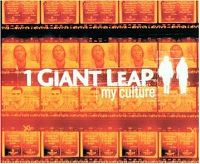 Cover 1 Giant Leap feat. Maxi Jazz & Robbie Williams - My Culture
