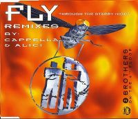 Cover 2 Brothers On The 4th Floor - Fly (Through The Starry Night)