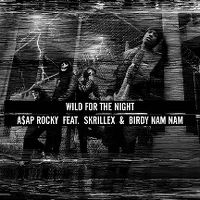 Cover A$AP Rocky feat. Skrillex & Birdy Nam Nam - Wild For The Night