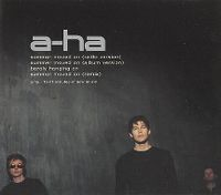Cover a-ha - Summer Moved On