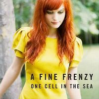 Cover A Fine Frenzy - One Cell In The Sea