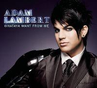 Cover Adam Lambert - Whataya Want From Me