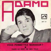 Cover Adamo - Vous permettez, Monsieur?