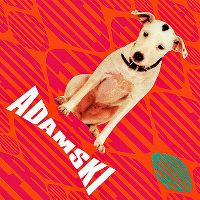 Cover Adamski - Killer
