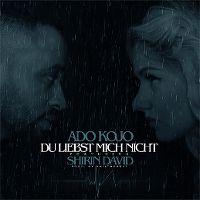 Cover Ado Kojo feat. Shirin David - Du liebst mich nicht
