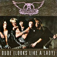 Cover Aerosmith - Dude (Looks Like A Lady)