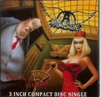 Cover Aerosmith - Love In An Elevator