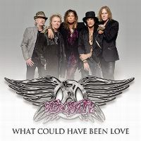 Cover Aerosmith - What Could Have Been Love