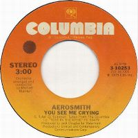 Cover Aerosmith - You See Me Crying