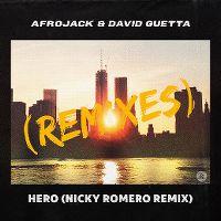 Cover Afrojack & David Guetta - Hero