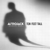 Cover Afrojack feat. Wrabel - Ten Feet Tall