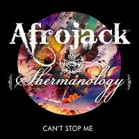 Cover Afrojack & Shermanology - Can't Stop Me