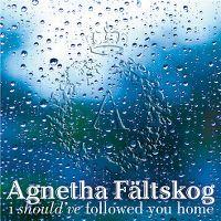 Cover Agnetha Fältskog feat. Gary Barlow - I Should've Followed You Home