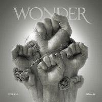 Cover Akwasi & Frenna - Wonder