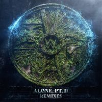 Cover Alan Walker & Ava Max - Alone, Pt. II