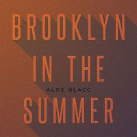 Cover Aloe Blacc - Brooklyn In The Summer