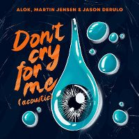 Cover Alok, Martin Jensen & Jason Derulo - Don't Cry For Me