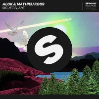 Cover Alok & Mathieu Koss - Big Jet Plane
