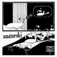 Cover Amatorski - Come Home
