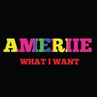 Cover Ameriie - What I Want