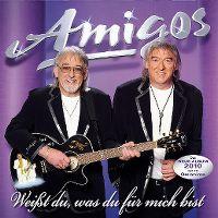 Cover Amigos - Weisst du, was du für mich bist