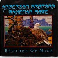 Cover Anderson, Bruford, Wakeman & Howe - Brother Of Mine