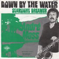 Cover André Moss - Down By The Water