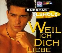 Cover Andreas Elsholz - Weil ich dich liebe