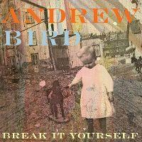 Cover Andrew Bird - Break It Yourself
