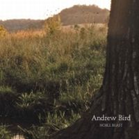 Cover Andrew Bird - Noble Beast