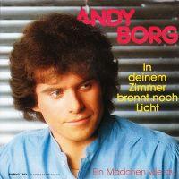 Cover Andy Borg - In deinem Zimmer brennt noch Licht