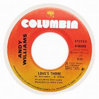 Cover Andy Williams - Love's Theme