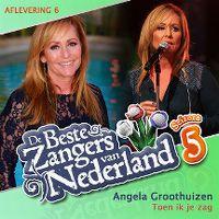 Cover Angela Groothuizen - Toen ik je zag