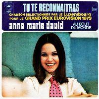 Cover Anne-Marie David - Tu te reconnaîtras