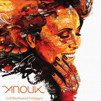 Cover Anouk - Cold Blackhearted Golddiggers