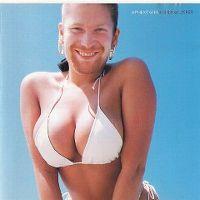 Cover Aphex Twin - Windowlicker