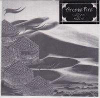 Cover Arcade Fire - Cold Wind