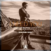 Cover Armin van Buuren & Garibay feat. Olaf Blackwood - I Need You