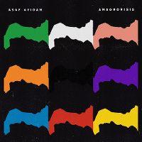 Cover Asaf Avidan - Anagnorisis