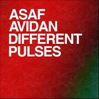 Cover Asaf Avidan - Different Pulses