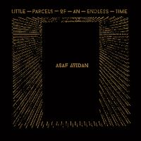 Cover Asaf Avidan - Little Parcels Of An Endless Time